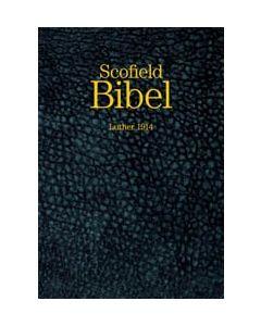 Scofield Bibel - Goldschnitt