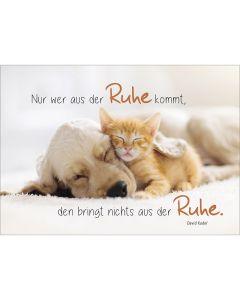 """Postkarten """"Ruhe"""" 4er-Serie"""