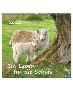 Ein Leben für die Schafe 2022 - Wandkalender