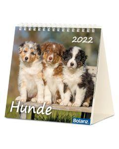 Hunde 2022 - Postkartenkalender